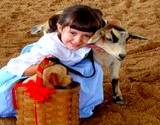 A little girl hugging a goat at the Bedford Fair