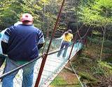 photo of people walking over a suspended bridge at Cooks Forest PA State Park