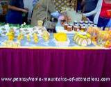 DelGrosso Parks Harvestfest honey display