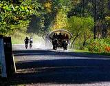 photo of horse drawn wagon and bikes on path to view the PA Grand Canyon