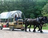 photo of people on a horse drawn wagon on the Appalachian Wagon Train