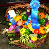 A basket of blue ribbon vegetables at the Bedford Fair