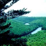 photo of view from Cooks Forest of the Clarion River