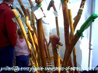 photo of handmade walking sticks at Hartslog Day festival