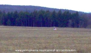 The crash site view of Flight 93 Memorial