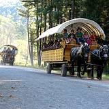 photo of a horse drawn wagon train full of sightseers touring the PA Grand Canyon