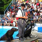photo of seal show at Hershey Park