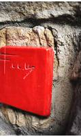 A red signature plaque is displayed on Frank Lloyd Wright's home designs.