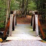 photo of a beautiful hiking trail at Kinzua Bridge State Park