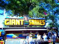 a photo of a large snake exhibit on the midway at the Cambria County Fair