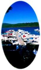 view of marina at Raystown Lake