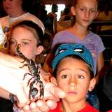 Penn State Festival children checking out a scorpion