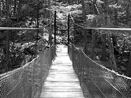 Suspension bridge at Trough Creek State Park