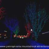 lighted trees at Lakemont Park's Holiday Lights on the Lake