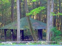 photo of a rustic picnic area tucked away in the Bear Meadows area on the Mystery Tour